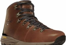 Danner Men's Mountain 600 Hiking Boot, Rich Brown - Full Grain, 11.5 D US